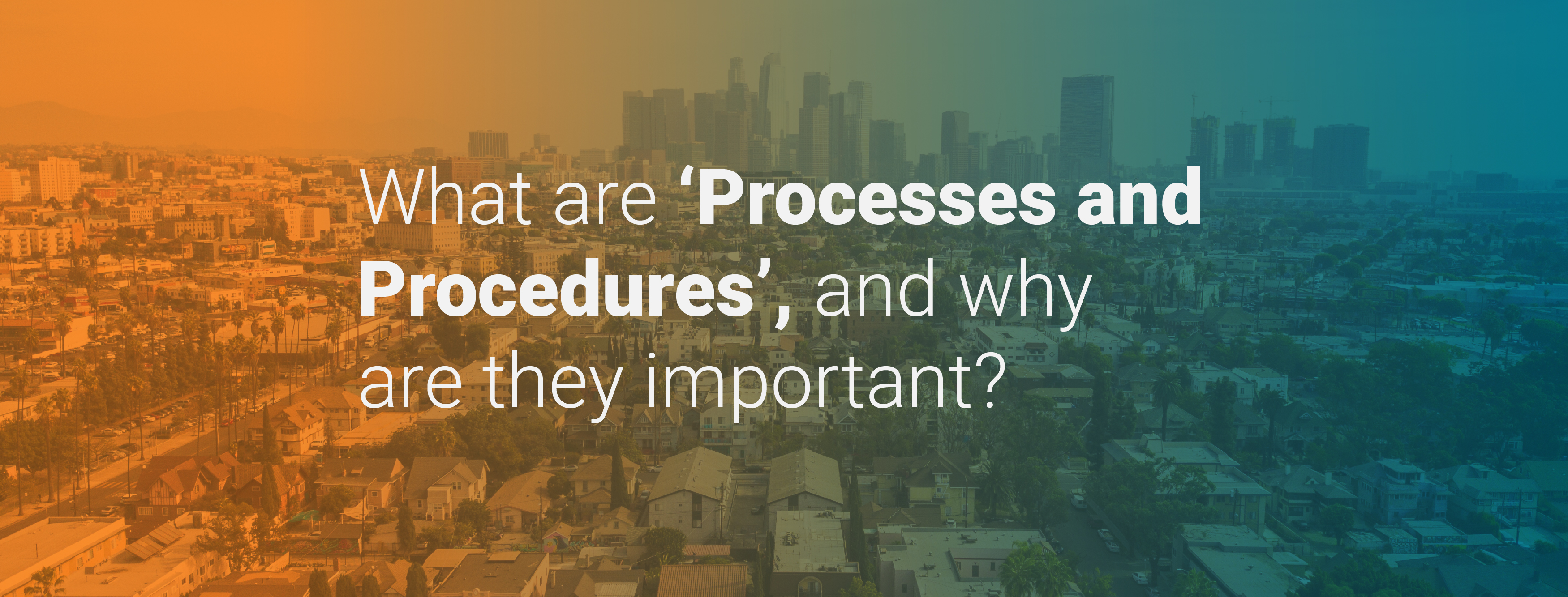 What Are 'Processes and Procedures', and Why Are They Important?